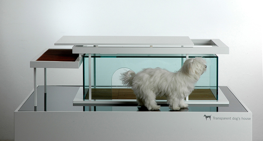 transparent-front-dog_ANTE